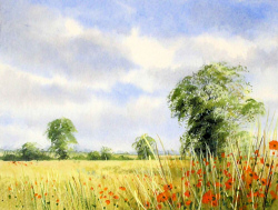 Watercolour - High Summer, North Norfolk
