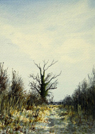Watercolour - Sheltering from the Cold Wind, Foxley
